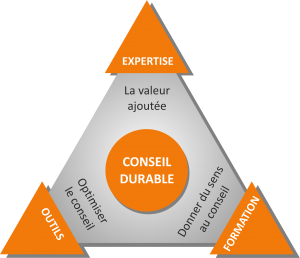triangle_approche-notre-cabinet-transparent